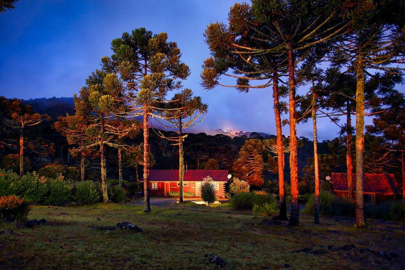 Cabana entre os pinheiros iluminados ao anoitecer