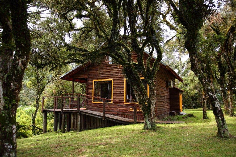 Cabana entre as árvores